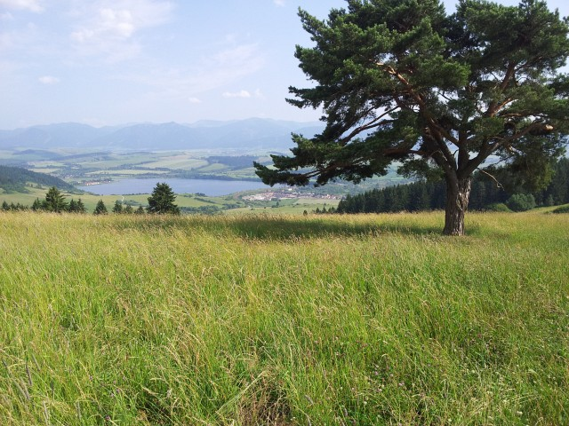 002-slovensko-2012